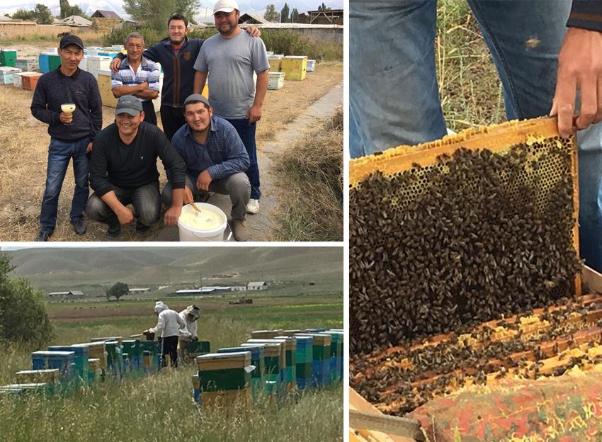 昔からキルギスでは養蜂が盛んであり、この地で穫れる本当のオーガニックハチミツは世界中のセレブに愛されています。